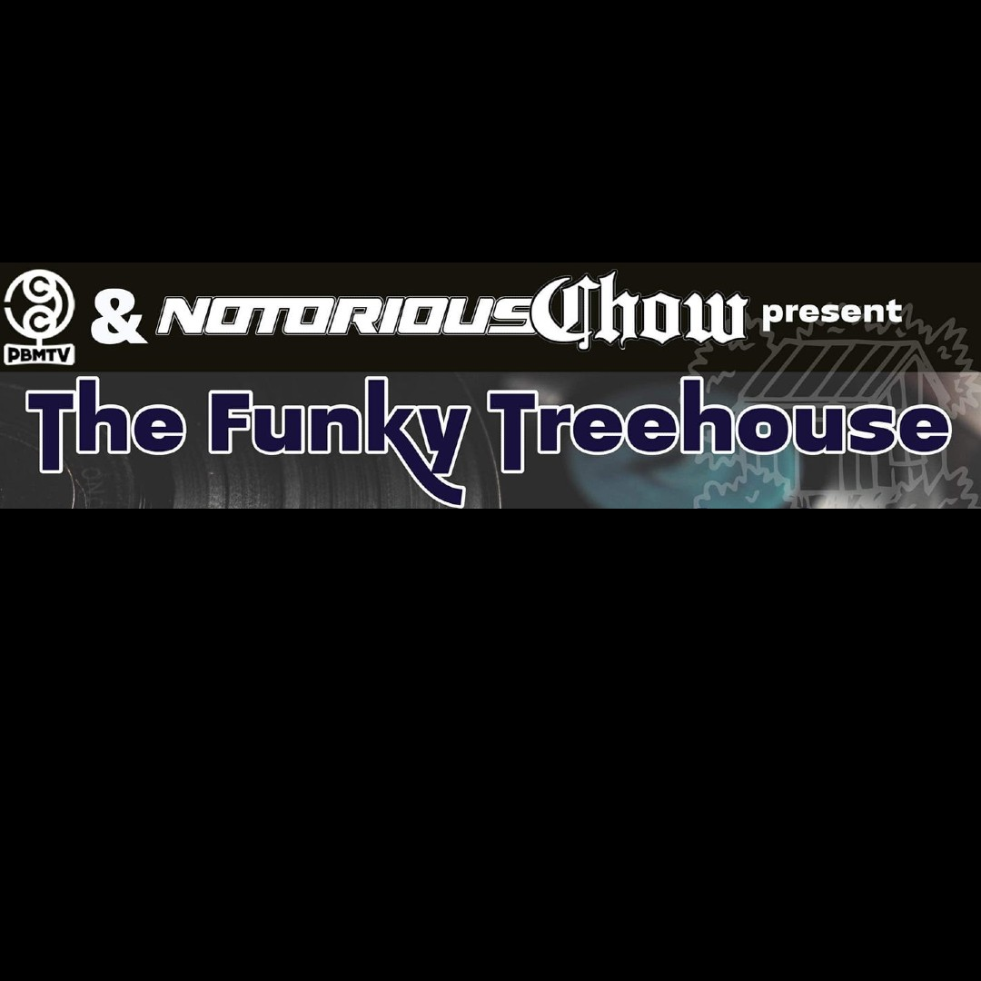 The Funky Treehouse image
